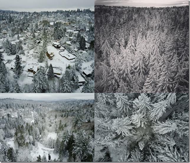 Portland Winter Wonderland